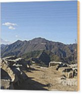 The Great Wall 858 Wood Print