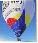 The Great Waterway Balloon Wood Print