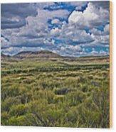 The Green Desert Wood Print