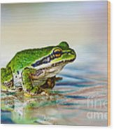 The Green Frog Wood Print by Robert Bales