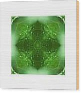 The Green Jewel Of Nature Mandala Wood Print