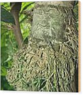 The Green Man Wood Print