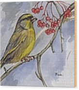 The Greenfinch Wood Print