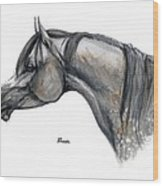 The Grey Arabian Horse 11 Wood Print