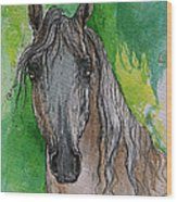 The Grey Arabian Horse 17 Wood Print