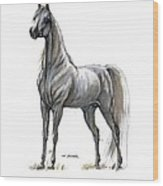 the Grey arabian horse 7 Wood Print