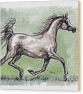 The Grey Arabian Horse 8 Wood Print