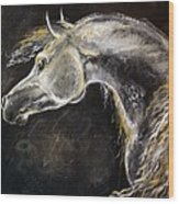 The Grey Arabian Horse 9 Wood Print