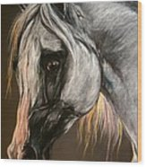 The Grey Arabian Horse Wood Print