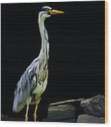 The Grey Heron Wood Print