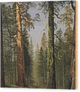 The Grizzly Giant Sequoia Mariposa Grove California Wood Print