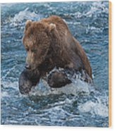 The Grizzly Plunge Wood Print
