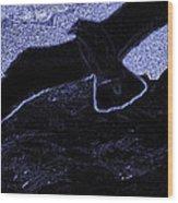 The Gull Wood Print