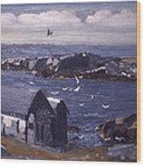 The Gulls Of Monhegan Wood Print
