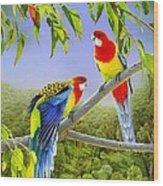 The Happy Couple - Eastern Rosellas  Wood Print