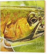 The Hare And The Trout Wood Print