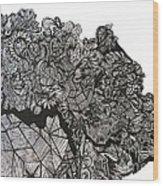 The Harvest Wood Print by Stephanie  Varner