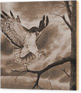The Hawk Is Landing Wood Print