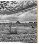 The Hay Bails Wood Print