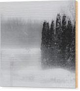 The Haze Of Winter Wood Print
