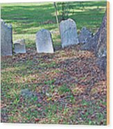 The Headstones Of Slaves Wood Print