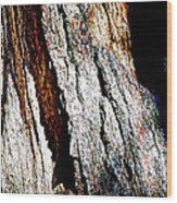 The Heart Of Barkness In Mariposa Grove In Yosemite National Park-california  Wood Print