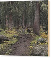 The High Forest Wood Print by Eric Glaser