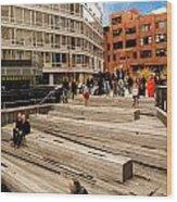 The High Line Urban Park New York Citiy Wood Print