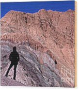 The Hill Of Seven Colours Jujuy Argentina Wood Print