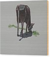 The Holy Cow And Dung 4 Wood Print
