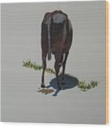 The Holy Cow And Dung 5 Wood Print