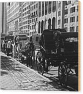 The Horse And Buggy Lineup Wood Print