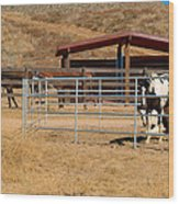 The Horse Ranch 3 Wood Print