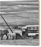 The Horses And The Welding Truck Wood Print