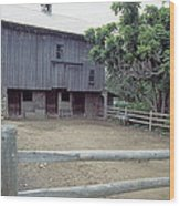 The Horses Are Out Of The Barn Wood Print