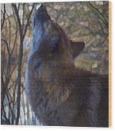 The Howl Wood Print