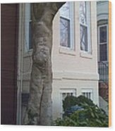 The Human Tree Wood Print