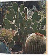 The Huntington Desert Garden Wood Print by Rona Black