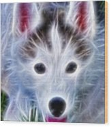 The Huskie Pup Wood Print by Bill Cannon