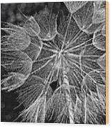 The Inner Weed Monochrome Wood Print