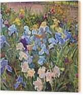 The Iris Bed Wood Print