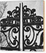 The Iron Gate Wood Print