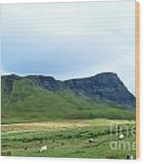 The Isle Of Skye In Scotland Wood Print