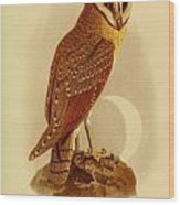 The Java Owl Cassell Wood Print