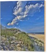 The Jersey Shore Wood Print