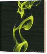 The Jester Wood Print