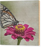The Joy Of A Butterfly Wood Print