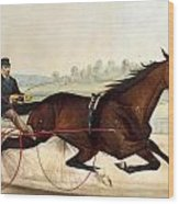 The King Of The Turf Wood Print by Currier And Ives