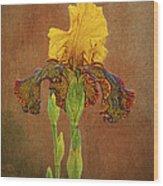 The Kings Prize Iris Wood Print