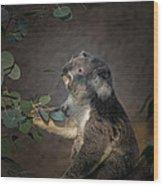 The Koala Wood Print